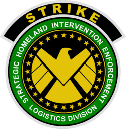Special Tactical Reserve for International Key Emergencies