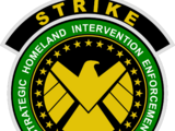 Special Tactical Reserve for International Key Emergencies (Earth-1010)