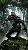 Black panther by uncannyknack d84l86w