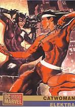 Catwoman vs Elektra