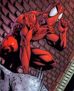 1008527-spider33 thumb