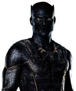 Community MCU Black Panther