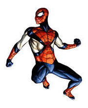 Spider-Man Earth-606 second costume