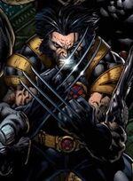 Wolverine(New52)