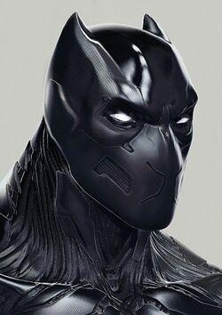 Black Panther (Infinitiverse)