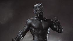 Black Panther (Renegades)