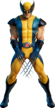 Wolverine Outfit
