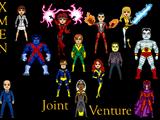Joint Venture Universe