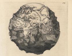 Earth-891