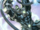 Bruce Banner (Earth-101)
