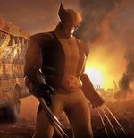 Wolverine (DR)