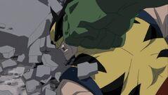 Wolverine Pumbled HV