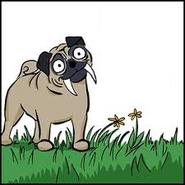 Sabretooth Pug