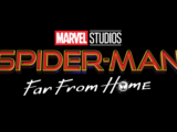Marvel's The Spectacular Spider-Man (Earth-113599)
