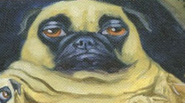 Blob Pug