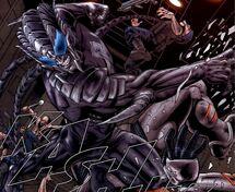 Spider slayer