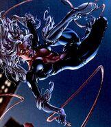 168910 26134 black cat super