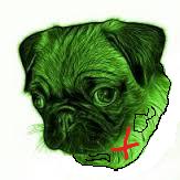 Doop Pug