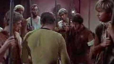 Captain Kirk Preamble