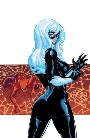 Black Cat Disambiguation