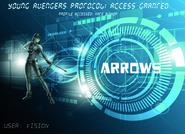 Arrows (YA)