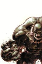 Hulk Banner Earth-61616