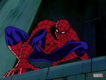 Spider-Man cartoon