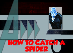 81-How to Catch a Spider