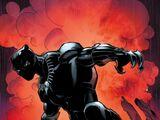 T'Challa (Earth-61616)