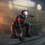 Ant-Man (DR)