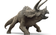 Triceratops (Earth-1600)