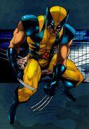 Wolverine (Excel)