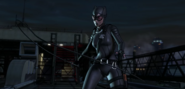 Catwoman (8259)