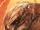 Asum 'Mdama (Earth-5875)