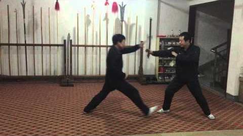 六合螳螂拳对练