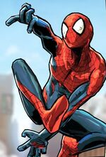 Peter Parker (Pocket Universe) (Earth-TRN461) from Spider-Man Unlimited (video game) 002