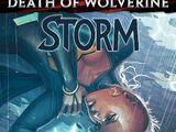 Storm Vol 3 4