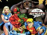 Avengers (Earth-9904)