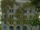 Crispus Attucks Complex