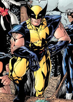 James Howlett (Earth-901237) from Exiles Vol 1 5 0001