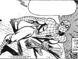 Spider-Man Newspaper Strips Vol 1 1977
