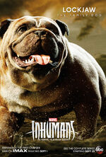 Marvel's Inhumans poster 014