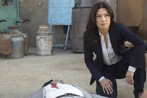 Marvel's Agents of S.H.I.E.L.D. Season 2 17