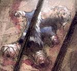 Pietro Maximoff (Earth-9591) from Ruins Vol 1 2 0001