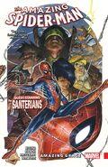 Amazing Spider-Man Amazing Grace TPB Vol 1 1