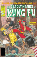 Deadly Hands of Kung Fu Vol 1 33