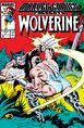 Marvel Comics Presents Vol 1 4.jpg