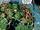 Vessel (Earth-616)