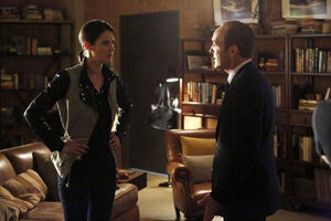 Maria Hill (Earth-199999) and Phillip Coulson (Earth-199999) from Marvel's Agents of S.H.I.E.L.D. Season 1 20 001