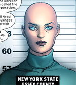 Heather Douglas (Earth-1610) from Ultimate Extinction Vol 1 2 001